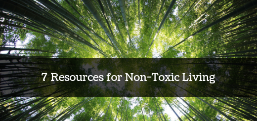 Top 7 Resources on Non-Toxic Living