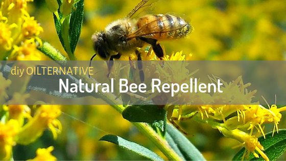 DIY Oilternative – Natural Bee Repellent