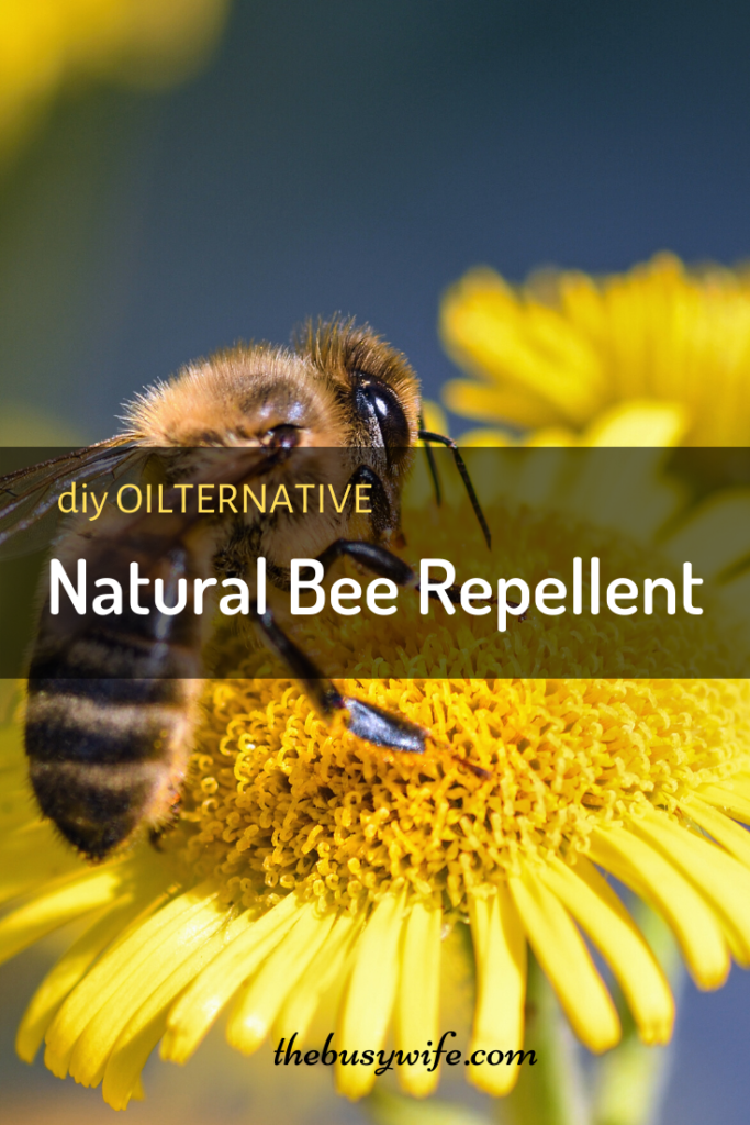 Natural Bee Repellent with Essential Oils